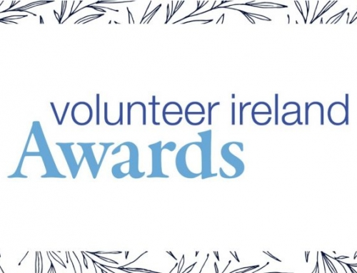 Local South Dublin Volunteers to Be Honoured At National Awards Ceremony